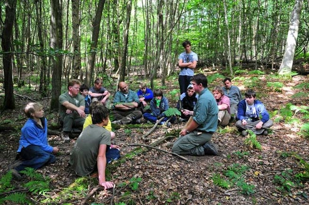 Bushcraft at the High Weald